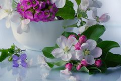 Bella merce nel carrello dei fiori di Burevestnik Fotografia Stock Libera da Diritti