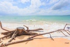 Bella Nai Yang Beach, Phuket, Tailandia fotografie stock libere da diritti