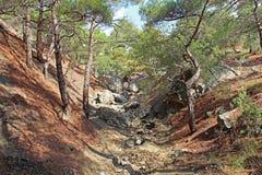 Bella natura al falco di Socol Sokol della montagna in Crimea Immagini Stock Libere da Diritti