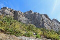 Bella natura al falco di Socol Sokol della montagna in Crimea Immagini Stock