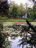 Bella natura attraverso gli alberi fotografie stock