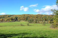 Bella natura di autunno Fotografia Stock