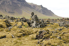 Bella natura islandese fotografia stock