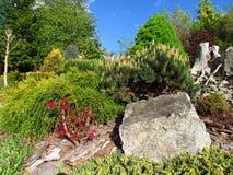 Bella natura morta del giardino con le pietre e le piante variopinte fotografia stock