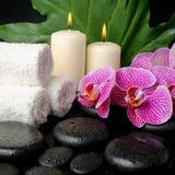 Bella natura morta della stazione termale delle pietre con le gocce, ramoscello di fioritura di zen Fotografie Stock Libere da Diritti