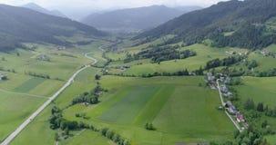 Bella natura nella vista del fuco, strada automatica fra i campi verdi e foreste stock footage