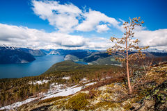 Bella natura Norvegia - Sognefjorden Fotografie Stock