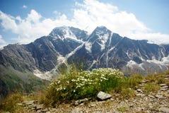 bella natura, paesaggio della montagna fotografia stock