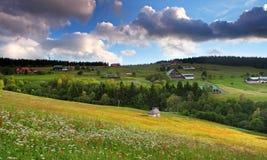 Bella natura verde della montagna. Immagini Stock