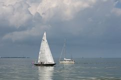 Bella navigazione bianca dell'yacht alla baia di IJsselmeer netherlands fotografia stock libera da diritti