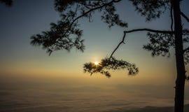 Bella nebbia del mare a tempo la mattina al punto di vista di alba Fotografia Stock
