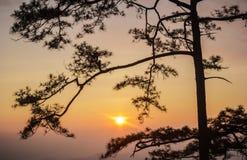 Bella nebbia del mare a tempo la mattina al punto di vista di alba Fotografia Stock Libera da Diritti
