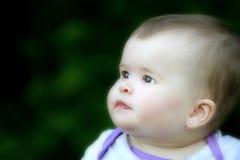 Bella neonata Fotografia Stock