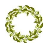 Bella Olive Wreath o Olive Crown Fotografia Stock