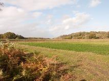 Bella pianura del paesaggio della campagna di verde del campo dell'azienda agricola fuori Fotografie Stock