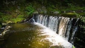 Bella piccola cascata nella corrente della foresta stock footage