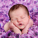 Bella piccola neonata in studio fotografie stock libere da diritti