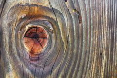 Bella plancia di legno annodata abete rosso Immagini Stock Libere da Diritti