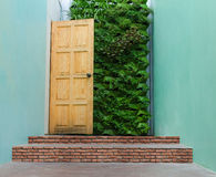 Bella porta di pelatura dipinta nascosta da dirigersi Fotografia Stock