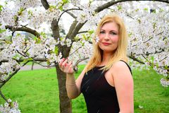 Bella posa femminile nel giardino di sakura Fotografie Stock