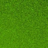 Bella priorità bassa dello sward dell'erba verde Fotografie Stock Libere da Diritti