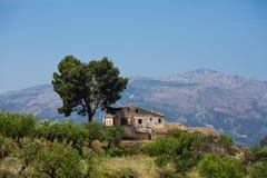 Bella priorità bassa di paesaggio Vecchi casa ed albero soli nelle montagne Fotografia Stock Libera da Diritti
