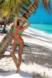 Bella ragazza abbronzata nei supporti alla moda del bikini accanto ad una palma sulla spiaggia di un'isola tropicale Vacanze esti fotografie stock libere da diritti