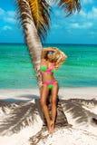 Bella ragazza abbronzata nei supporti alla moda del bikini accanto ad una palma sulla spiaggia di un'isola tropicale Vacanze esti immagine stock libera da diritti