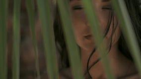 Bella ragazza in bikini contro fondo tropicale Ritratto perfetto stock footage