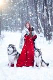 Bella ragazza in cappotto di pelle di pecora con i cani immagine stock