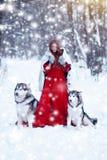 Bella ragazza in cappotto di pelle di pecora con i cani La ragazza con il husky siberiano o il lupo o il Malamute immagini stock libere da diritti