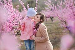 Bella ragazza castana vestita alla moda sveglia con la mamma della madre che sta su un campo di giovane pesco della molla con il  Immagini Stock Libere da Diritti