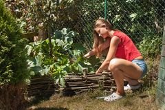 Bella ragazza che lavora nel giardino Il giovane giardiniere regola il giardino Fotografia Stock