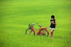 Bella ragazza che legge un libro con la bici in risaia Fotografia Stock Libera da Diritti