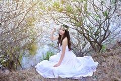Bella ragazza cinese in prugna Immagine Stock Libera da Diritti
