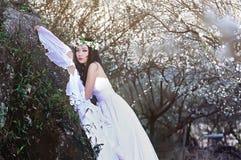 Bella ragazza cinese in prugna Immagini Stock Libere da Diritti