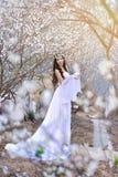 Bella ragazza cinese in prugna Fotografia Stock