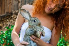 Bella ragazza con capelli rossi sulla natura con un coniglio in sue mani Immagini Stock