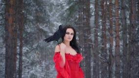 Bella ragazza con il corvo mistico nella foresta di inverno stock footage