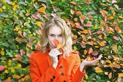 Bella ragazza con il mazzo dei fogli Fotografie Stock