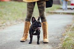 Bella ragazza con il suo cane nel parco di autunno immagine stock