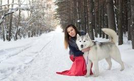 Bella ragazza con un cane nella foresta Immagine Stock