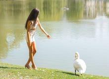 Bella ragazza con un cigno su un lago Immagini Stock Libere da Diritti