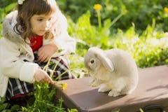 Bella ragazza con un coniglio nel legno Fotografia Stock