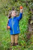 Bella ragazza con una mela organica nel giardino fotografia stock libera da diritti