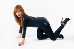 Bella ragazza in costume del gatto fotografie stock libere da diritti