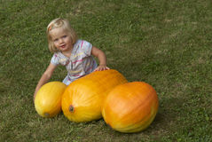 Bella ragazza del bambino divertendosi con l'agricoltura sulla toppa organica della zucca Fotografia Stock