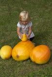 Bella ragazza del bambino divertendosi con l'agricoltura sulla toppa organica della zucca Fotografie Stock