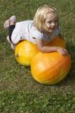 Bella ragazza del bambino divertendosi con l'agricoltura sulla toppa organica della zucca Immagine Stock