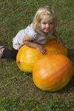 Bella ragazza del bambino divertendosi con l'agricoltura sulla toppa organica della zucca Fotografia Stock Libera da Diritti